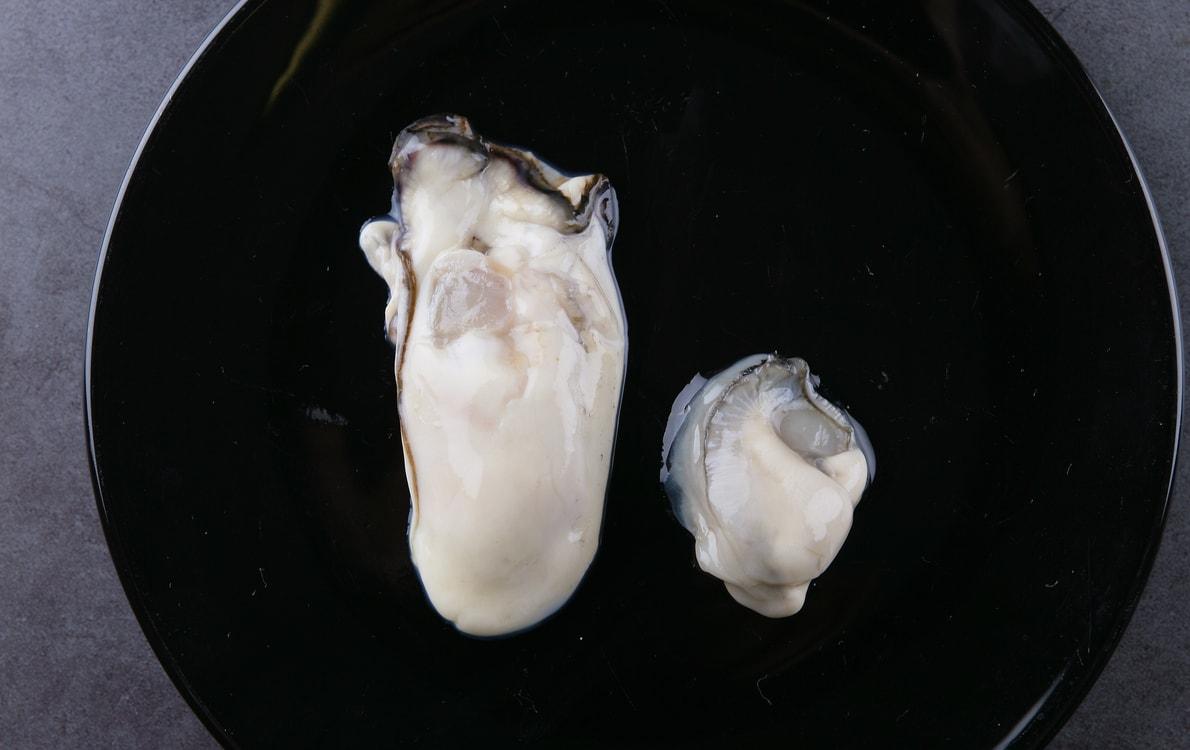 法 牡蠣 調理